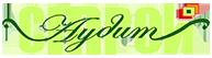 Stroyaudit.com